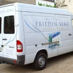 friedenberg